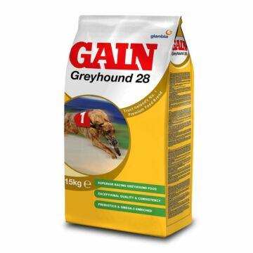 Greyhound 28