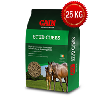 GAIN Stud Cubes