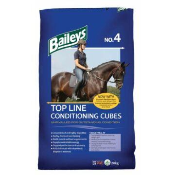 Baileys No. 4 Top Line Conditioning Cubes