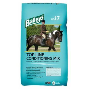 Baileys No.17 Top Line Conditioning Mix
